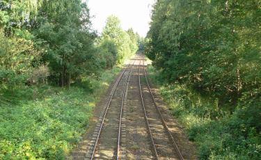 Widok na linię kolejową (Kolce) którą ganiano więźniów (Fot. krystian)