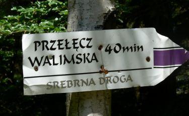 Fioletowy szlak - Srebrna Droga (Fot. krystian)