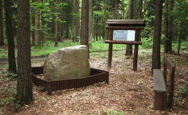 Głaz narzutowo-granitowy (Fot. krystian)