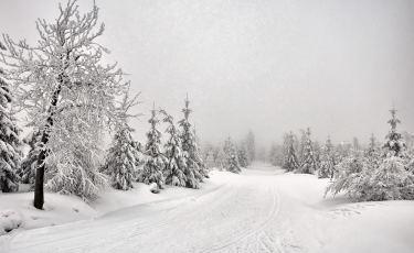 Góry Izerskie z trasy narciarskiej. (Fot. Szymon Nitka / flickr Licencja: CC BY-SA 2.0)