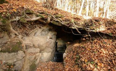 Jaskinia Radochowska (Fot. mateo)