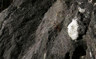 Kamieniołom Kletno II (Fot. mateo)