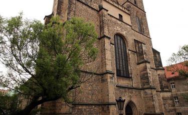 Kościół Wniebowzięcia NMP (Fot. krystian)