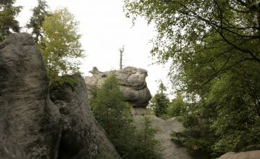 Kwoka (Fot. krystian)