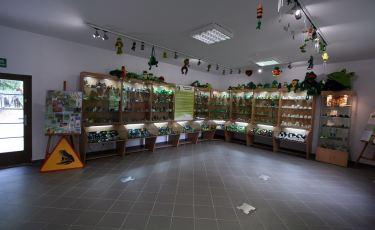 Muzeum Żaby  (Fot. krystian)