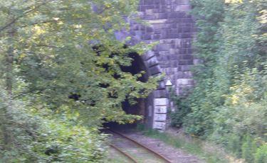 Wjazd do tunelu od strony Jedliny Zdrój (Fot. krystian)