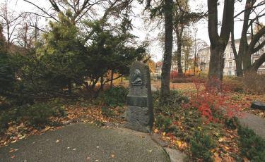 Obelisk z popiersiem Fryderyka Chopina  (Fot. mateo)