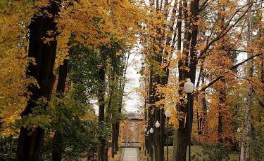 Park Zdrojowy (Fot. mateo)
