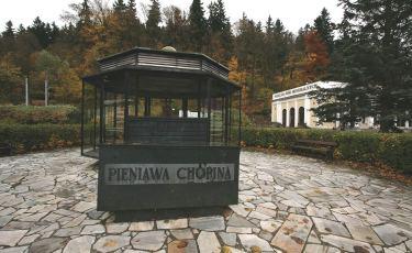 Pijalnia Pieniawa Chopin (Fot. mateo)