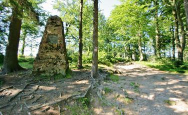 Widok na pomnik Carla Wiesena przy szlaku