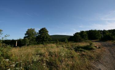 Przełęcz Walimska (Fot. krystian)