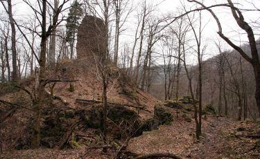 Ruiny zamku Radosno (Fot. aga)