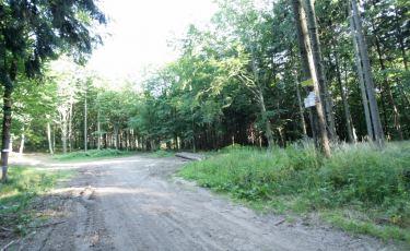 Zejście dwóch szlaków, niebieskiego i czerwonego (Fot. krystian)