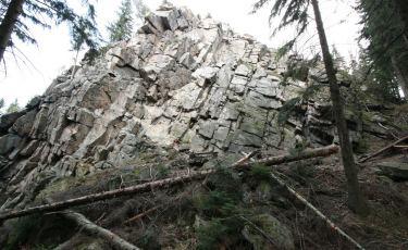 Trojan na wzgórzu Trojak (Fot. mateo)