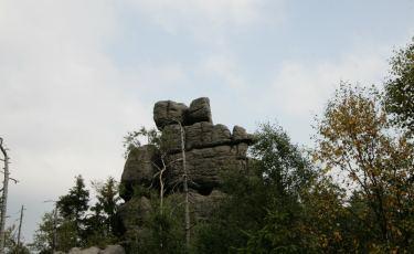 Tron Liczyrzepy (Fot. krystian)