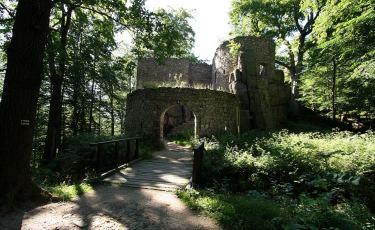 Zamek Bolczów (Fot. krystian)