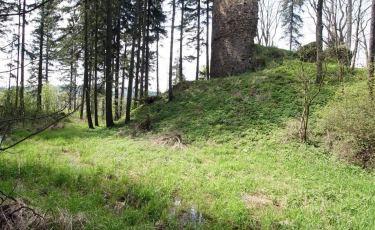 Zamek Lubno w Czarnym Borze (Fot. aga)