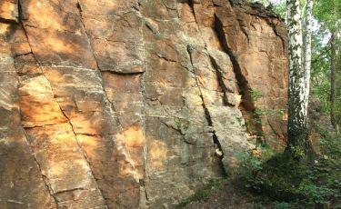 Złoty Las - Ścianka (Fot. mateo)